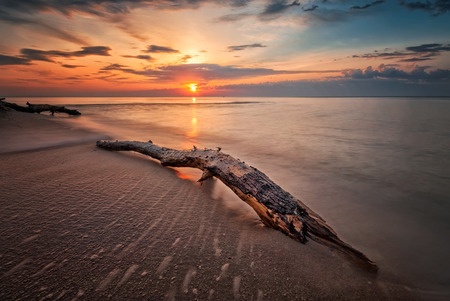 sunny beach: Magnificent sunrise view with a stormy sea beach with a log and waves flowing out Stock Photo