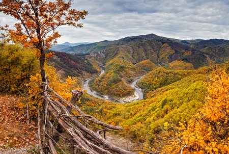 meanders: Autumn mountain.  Amazing autumn view of one of the meanders of Arda River, Bulgaria