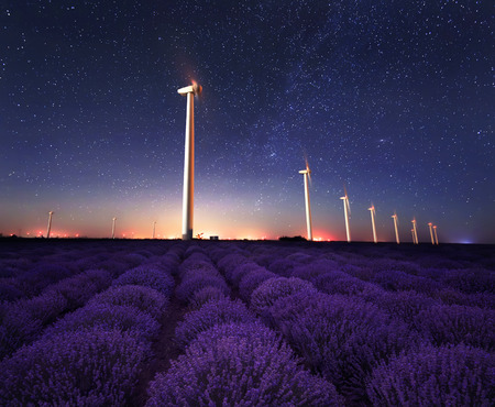 wind turbines: Lavender night. Night view of wind farm near ? blooming lavender field in Northeastern Bulgaria. Stock Photo