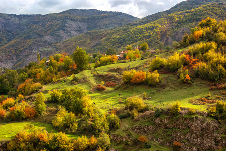 Autumn is coming...  Amazing day view with a sun-drenched little village in Rhodopi Mountains, Bulgaria.