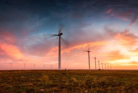 Wind farm at sunrise