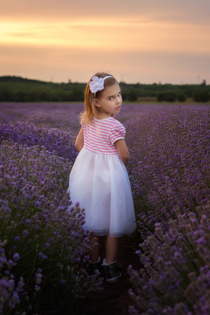 Lavender girl  Beautiful little girl on the background of a lavender field at sunset