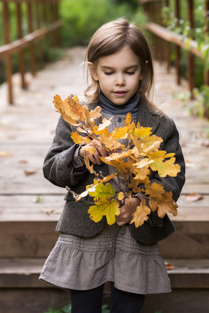Adorable little girl is playing on an autumn Archivio Fotografico - 126045592