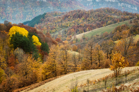 Amazing autumn view of a mountain meadow in the central Balkan Mountains, Bulgaria Archivio Fotografico - 126045600