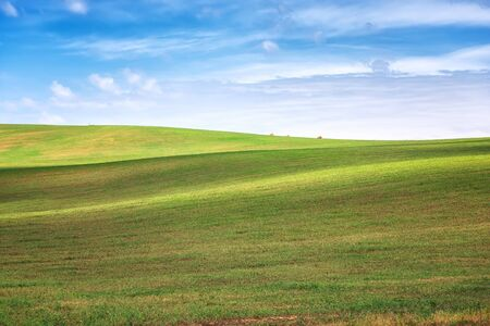 Amazing landscape with green wheat field and rolling hills in South Moravia, Czech Republic 写真素材