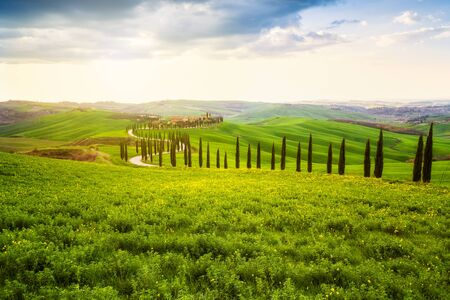 Amazing spring landscape with green rolling hills, cypresses and farm houses in the heart of Tuscany, Italy