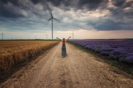 Rear view of a woman in dress walking along a path between fields of lavender and wheat 写真素材