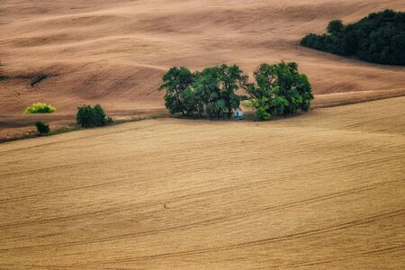 Amazing landscape with wheat field, rolling hills and the chapel of St. Barbara in South Moravia, Czech Republic 写真素材