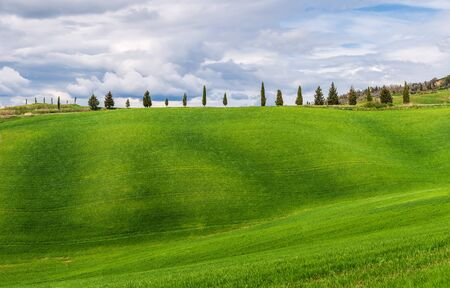 Amazing Tuscany landscape with green rolling hills in spring sunny morning