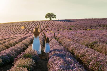 Rear view of mother and little daughter with raised hands between rows of blooming lavender field at golden hour before sunset