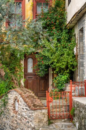 Entrance of a house with an ancient wooden door sunken in greenery by colored bushes and an olive tree in the old town of Kavala, northern Greece 写真素材