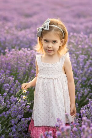 Portrait of a pretty little girl in a fully bloomed lavender field 写真素材