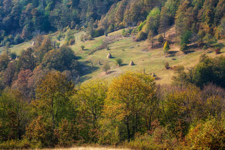 Amazing aerial autumn view of a mountain meadows and forests, Balkan Mountains, Bulgaria 写真素材