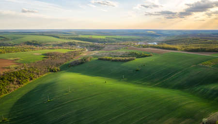 Aerial view of beautiful countryside with green rolling field in golden hour before sunset.