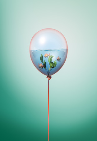 Goldfishes swimming in water minimal 3d illustration concept inside balloon. Flying balloon copy space idea with gold fishes swimming on green background Stock Photo