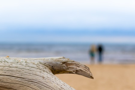 An old log on a beach and couple of lovers on the beach are not in focus Baltic sea on background. Love concept. Imagens