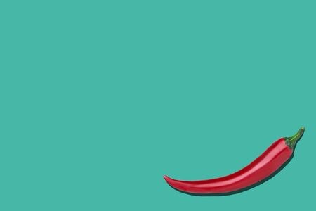 Single red chili pepper on a blue background with copyspace Stock Photo