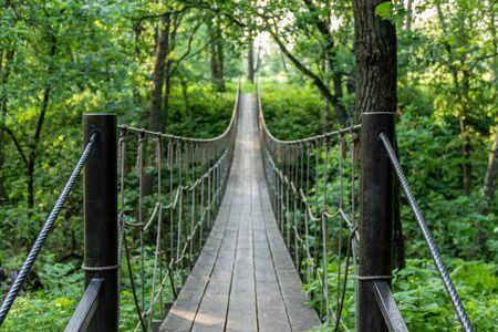 Hanging bridge deep in dark forest in the evening in summer