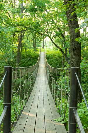 Suspension bridge of ropes and woods for a jungle adventure travel concept