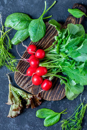 Vegetable set with radish, salad, spinach and dill. Concept picture for raw vegan recipes.