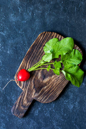 Fresh garden radish with leafs from organic farm on dark background. Top view with copy space