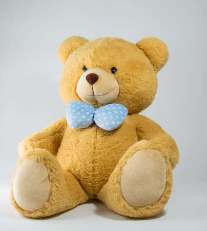 ted: Brown Bear 1