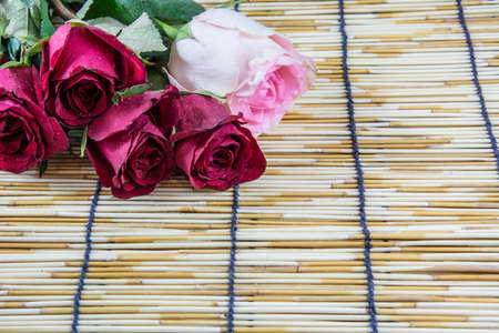 wood blinds: Roses placed on a woven wood blinds 2 Stock Photo
