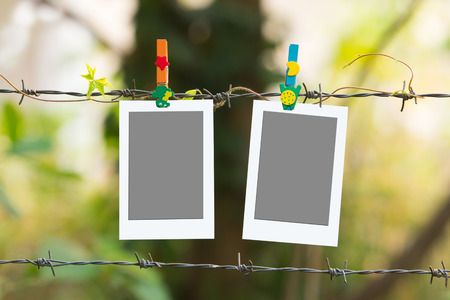 barbed wire frame: Photo Frames on barbed wire with colored clothespins