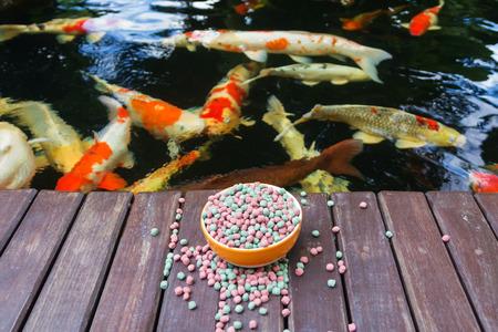 KOI Food and Koi Pond Standard-Bild