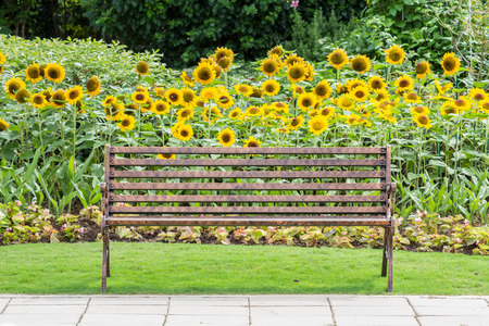 Iron bench in a park