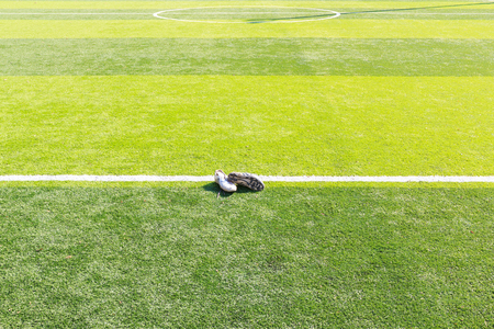 football shoes: Old football shoes on green grass Stock Photo