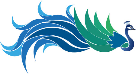 Vector illustration peacock with tail extends to the rear