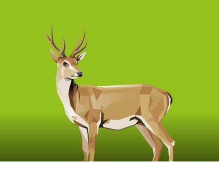 modification: Vector modification deer shape, with a square style and green background Illustration