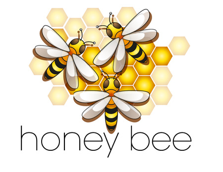 jelly: collection of honey bees in the beehive
