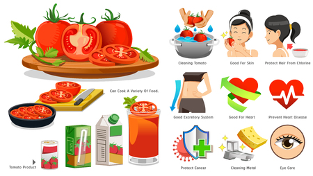 The benefits of tomato in medicine. 向量圖像