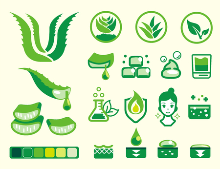 Basic attribute of aloe vera color icon set. Herbal Products for Beauty. Illustration