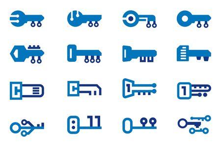 Digital key icon. License code of Programs.