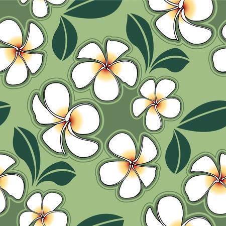 Plumeria flower  for design