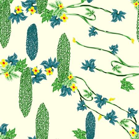 Bitter Melon of  design illustrations Illustration