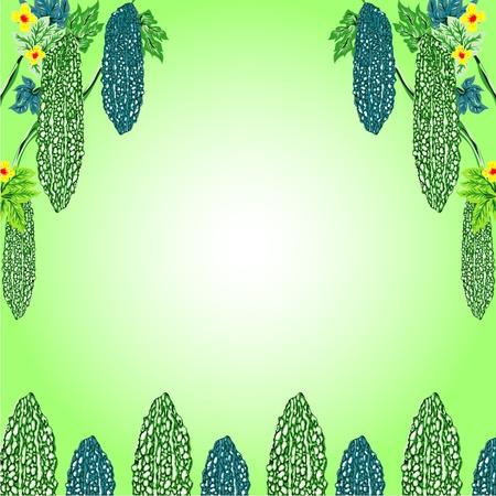 Bitter Melon frame of  design illustrations