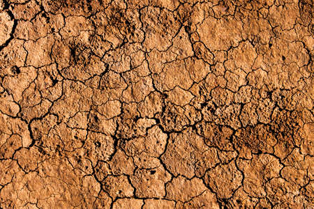Background and texture of cracked dry earth.(The dry soil surface) Stock Photo