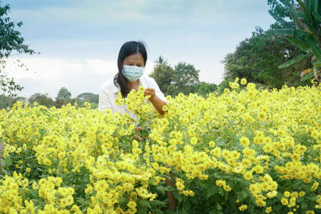 Gardeners are checking for pests and diseases in flower gardens