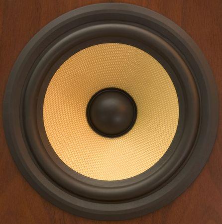 remix: close-up of kevlar speaker