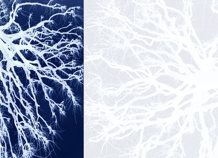 blue oriental background with branch silhouettes photo