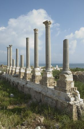 heliopolis: Ancient columns of Tyre, Lebanon Stock Photo