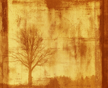 grunge frame with tree silhouette photo