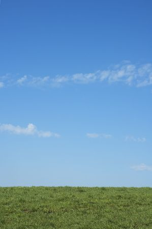 background of green grass and blue sky Stock Photo