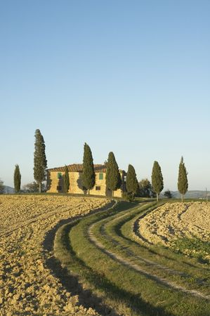typical: typical tuscan landscape Stock Photo