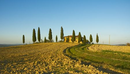 typical tuscan landscape Stock Photo - 638366