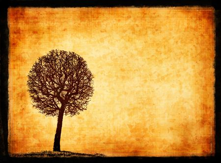 grunge frame with tree silhouette Stock Photo - 897083